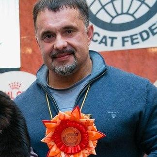 Питомник кошек в СПБ