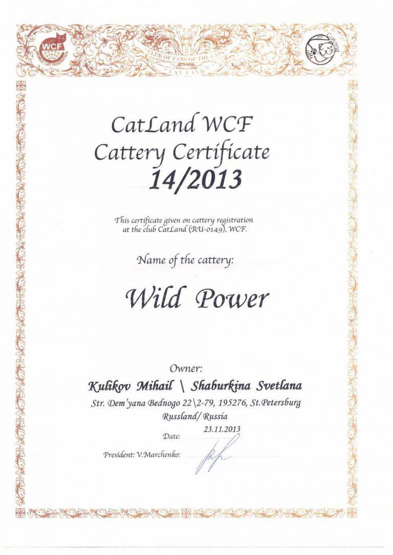 Сертификат питомника кошек wildpower